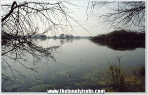 Visit Sultanpur Bird Sanctuary